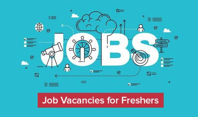 job vacancies for Freshers